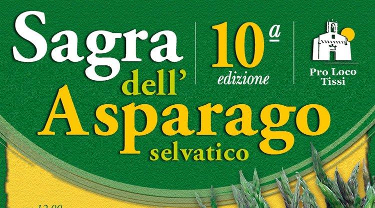 sagra-asparago-2014-tissi-locandina