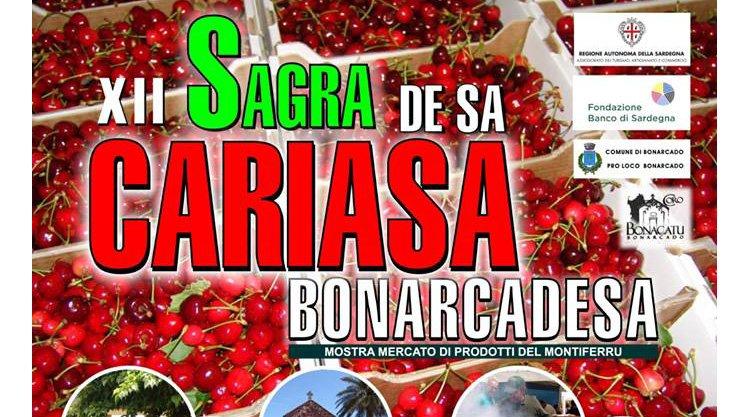 sagra-ciliegie-2014-bonarcado