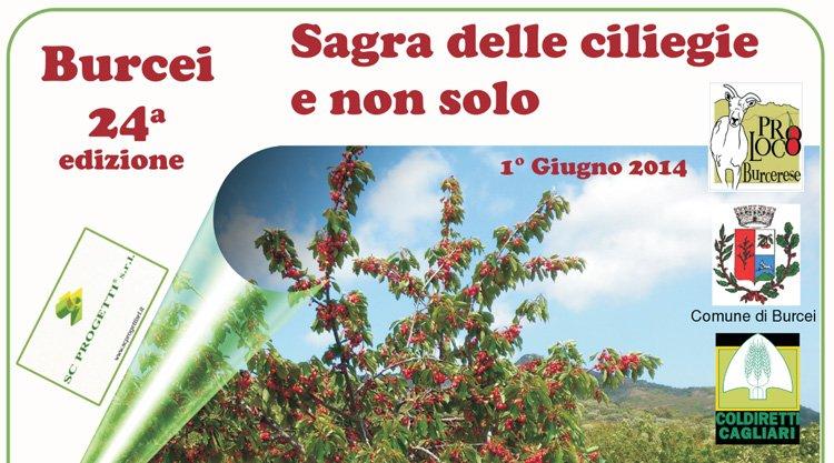 sagra-delle-ciliegie-2014-burcei