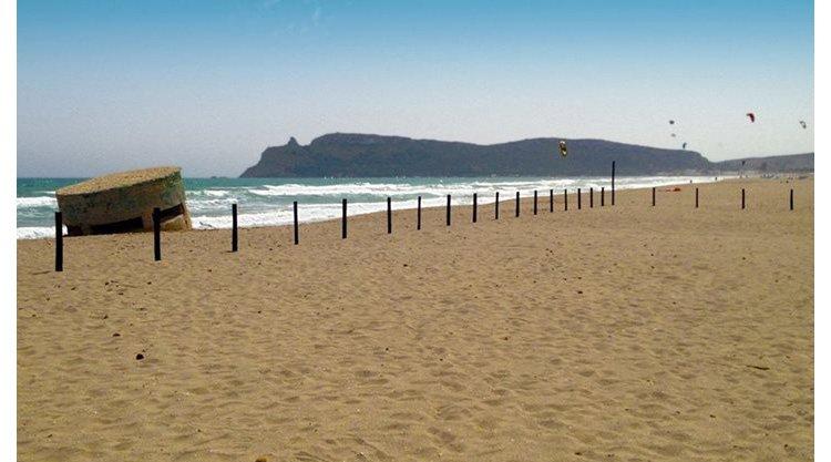 spiaggia-cani-poetto-cagliari