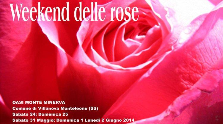 weekend-delle-rose-2014-villanova-monteleone