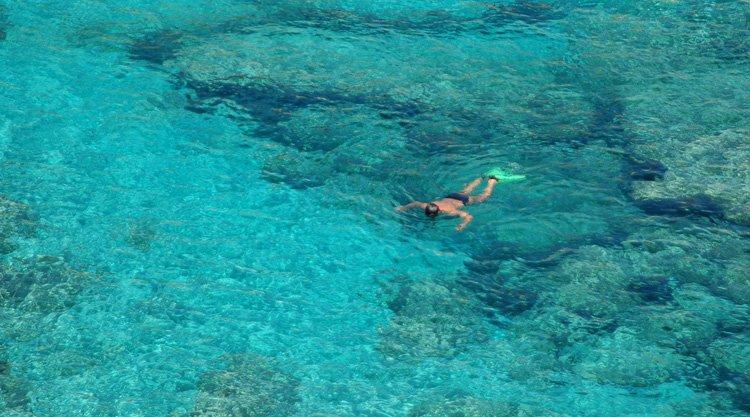 nuotando-nel-mare-della-sardegna
