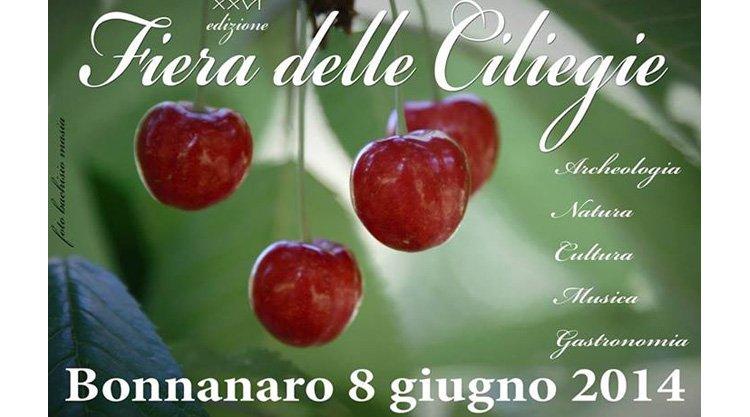 sagra-delle-ciliegie-2014-bonannaro
