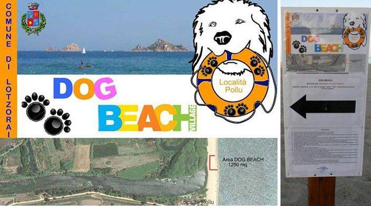dog-beach-lotzorai