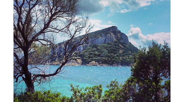 isola-figarolo