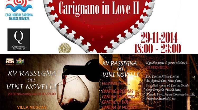 carignano-in-love-vini-novelli-cagliari-2014