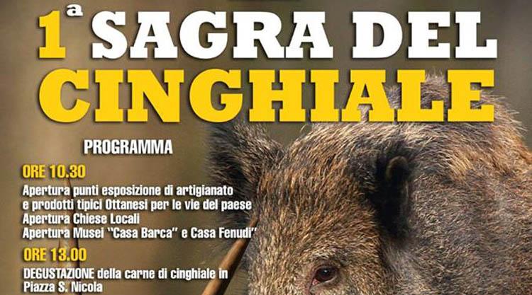 sagra-cinghiale-ottana-2015-manifesto