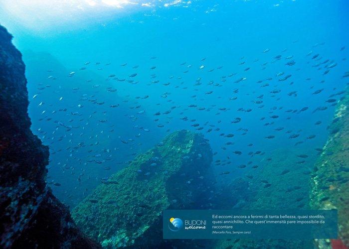 Webcam sulle spiagge di budoni per scoprire la meno for Budoni mare