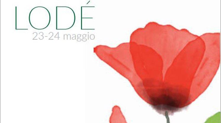 primavera-in-baronia-20015-manifesto-lode