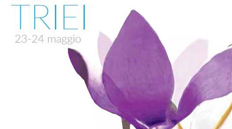 primavera-in-ogliastra-triei-manifesto-2015