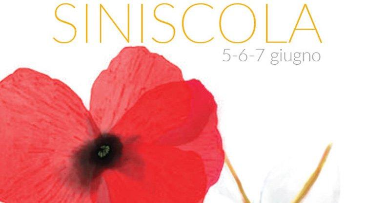 primavera-in-baronia-siniscola-manifesto-2015
