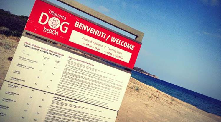 tiliguerta-dog-beach-ingresso