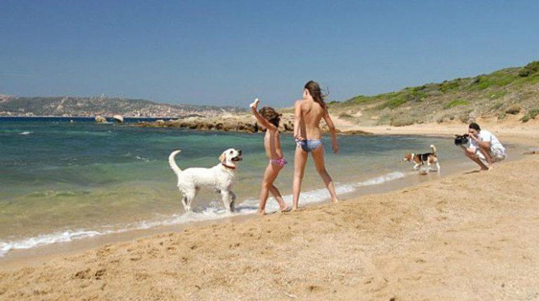dog-beach-palau-sardinia