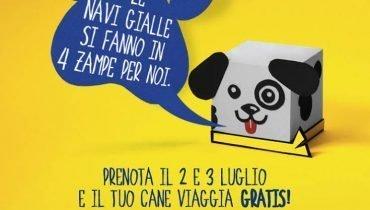 offerta-cani-traghetti-sardinia-ferries